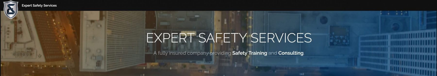 Expert Safety Services